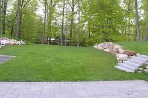 30 Backyard.jpg