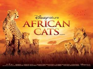 Carousel_image_03609ab2353e15265dee_movie_disney_nature_african_cats