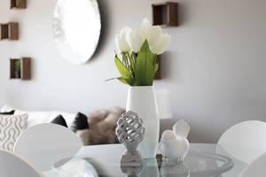 Carousel image 0816f31fef849665d009 interior design live plants organic