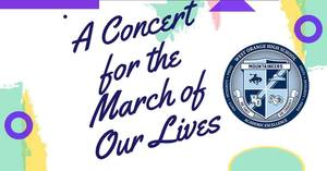 Carousel_image_095241775058ff3cc21d_z_concert_for_the_march_for_our_lives