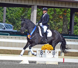 Carousel_image_0cceb0d15c6dae06eb0b_esdcta_dressage_championship_2017165