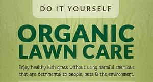 organic lawn.jpg