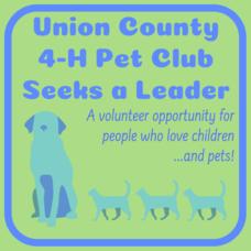 Carousel image 132ad813540d8f6f6054 4 h pet club seeks leader