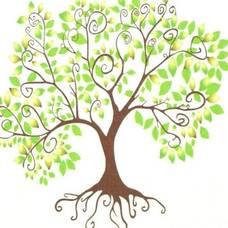 landmark tree.jpg