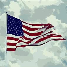 Carousel_image_138a63f9f04db23025ab_dec64373f5f2ccc81cec_american-flag-photo