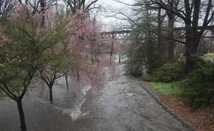 Carousel_image_167f2d80bb8f87b4d34b_april_16_2018_flood_l