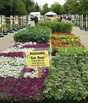 Maplewood Garden Club's 82nd Annual Plant Sale