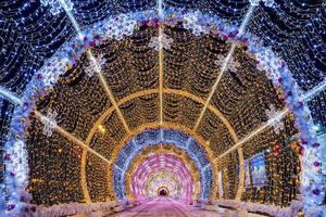 Carousel_image_187f9fd4d2242b3d49a6_best_crop_b1e670d20f79e3051d92_christmas-lights-02
