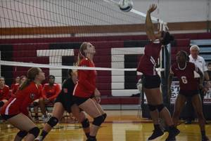 Carousel_image_1cde14a8917ca2b2b353_volleyball_october_4_2017_a