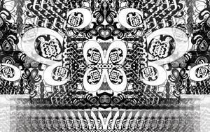 Carousel image 1d913c2902767b2ca04c sompixrvccartshowtimkahn