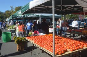 Scotch Plains Farmers Mkt - Ort Farms.JPG