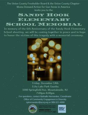 Carousel_image_21cb80a2d02bdddc4e13_sandy_hook_memorial_flyer