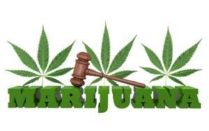 Carousel image 24977b2c105e6174c63e legal marijuana 1024x640