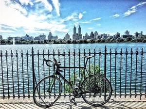 Carousel_image_2627933190f685d0ecff_bike_to_florida_17
