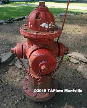 Carousel image 268af03edbd0b8cbd6ec a fire hydrant  4