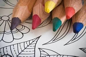 Carousel_image_26adbd9a4d2f5eca10d2_coloring