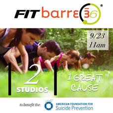 Carousel_image_28cbaa5efa4e3ec3497d_fit_36_barre_suicide_prevention