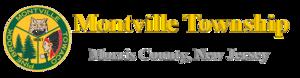Township logo.png