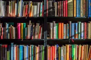 Carousel_image_304748ea9a0cfcf700aa_books2