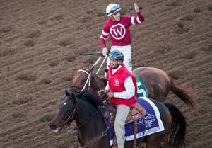 Carousel_image_3275f1be8d8a81c55110_breeders_cup_racing_2017_classic_338