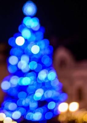 Carousel_image_36245e69b994f1fb8974_blue-christmas