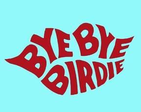 Carousel_image_363bd9d42adb77970abc_bye_bye_birdie