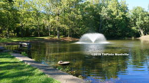 Carousel image 39323f07d12ed7f7f9c6 a    the camp dawson pond  2018 tapinto montville     1.