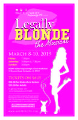 Carousel_image_3b037f8f5e2db046f2c3_legally_blonde_jpeg