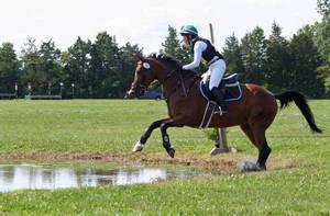 Carousel image 3b28dc82b06d572b118d bucks county horse trials sept 10 2017070