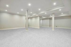 22 - Expansive Lower Level Recreation Room.jpg