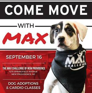move with max.jpg