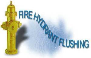Carousel_image_458e5c3ccd9b6f41d648_flushing