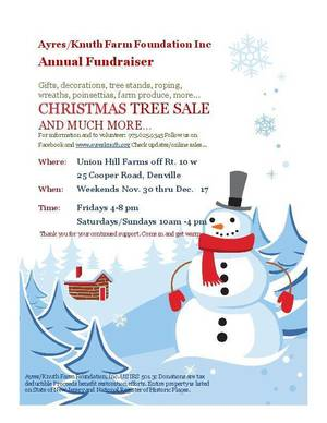 Carousel_image_48097df1512cef2bdcb6_tree_sale_flyer_2018