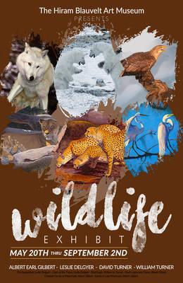 Carousel_image_49fe6952cdaa68e32673_wildlife_-bam-5-18