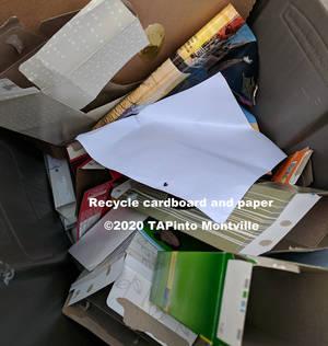 Carousel_image_4e868e17d47eb83d2414_a_cardboard_in_2020_gimped__-_picasa___2020_tapinto_montville