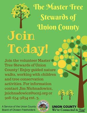Carousel_image_50237a137fa796381958_master_tree_stewards_flyer__jpeg_