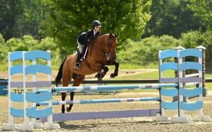 Carousel_image_5567880aa072a306f49f_vermont_treuding_equitation