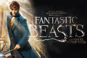 Carousel_image_55f541ae8426c1ce78db_779ee5cb5eb8b867751b_fantastic-beasts-and-where-to-find-them