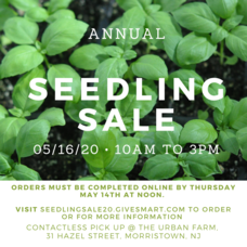 Grow It Green Morristown Seedling Sale
