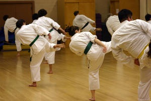 Carousel_image_5bb3963465ebf93b8065_karate
