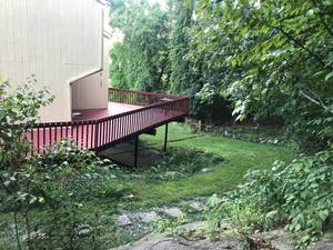 back yard with stone path.JPG