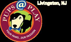 Carousel image 5e4b1cceaf1a0788c23c pupsatplay logo header