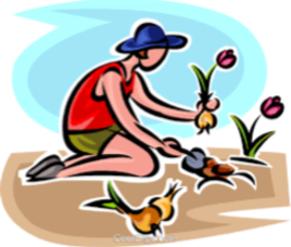gardener clip art.png