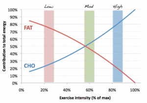 Carousel image 637b74a555f63ac67ccf fat and cho use with ex intensity1