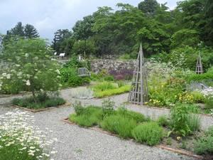 Carousel_image_64ec4c9123122abd5e3a_garden--6-17-