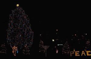Carousel_image_6608f5328711949c20ae_christmas_tree_nutley_2016_a