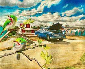 Carousel_image_6634bf75ca17bc1f53b3_bacbirdsbest