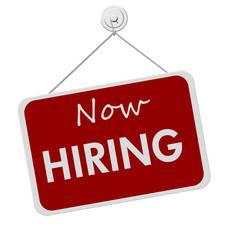 Carousel image 665f2b04c4407a603f63 hiring