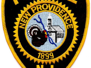 Carousel image 67601283fef0b31c41d6 new providence police shield