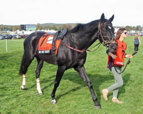 Carousel image 69ccd1b793e45f55cced far hills races grand national222
